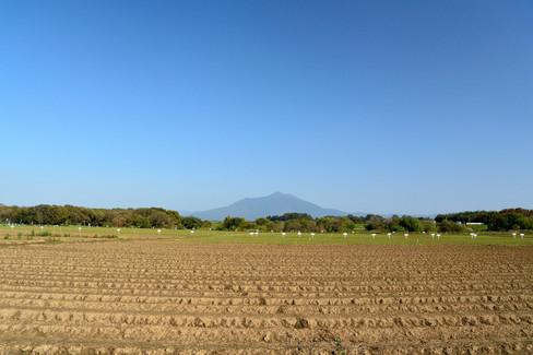 r20161113_09_小貝川ふれあい公園001.JPG